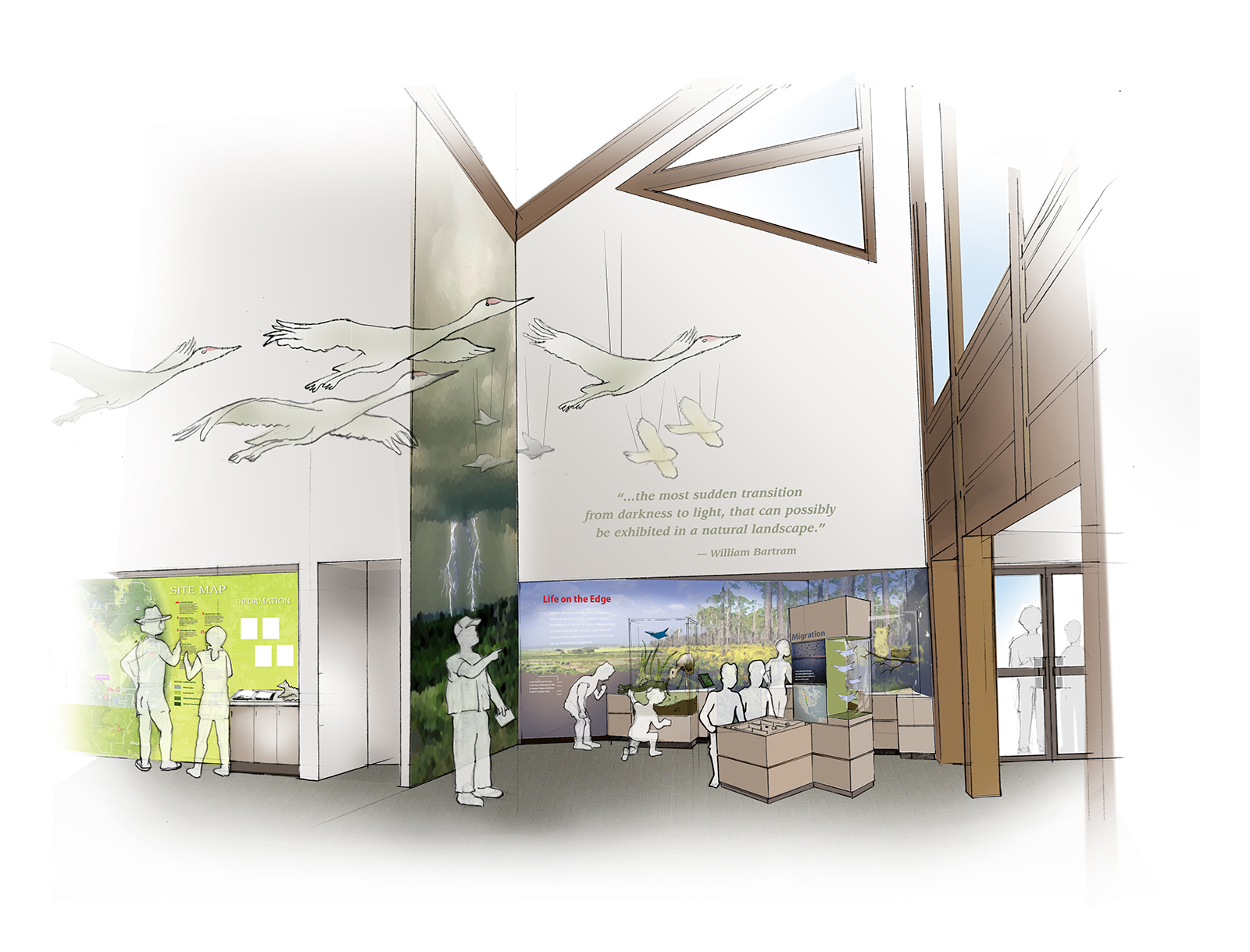 Exhibits - Florida Department of Parks and Recreation to transform their crown jewel visitor center, Paynes Prairie Preserve