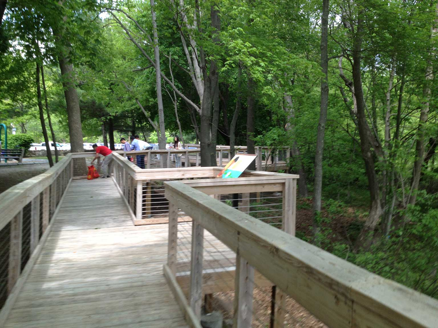 The new boardwalk made accessible spectacular views of the Marsh and reduced human intrusion to the fragile habitat. Located along the path are strategically placed viewing nodes.