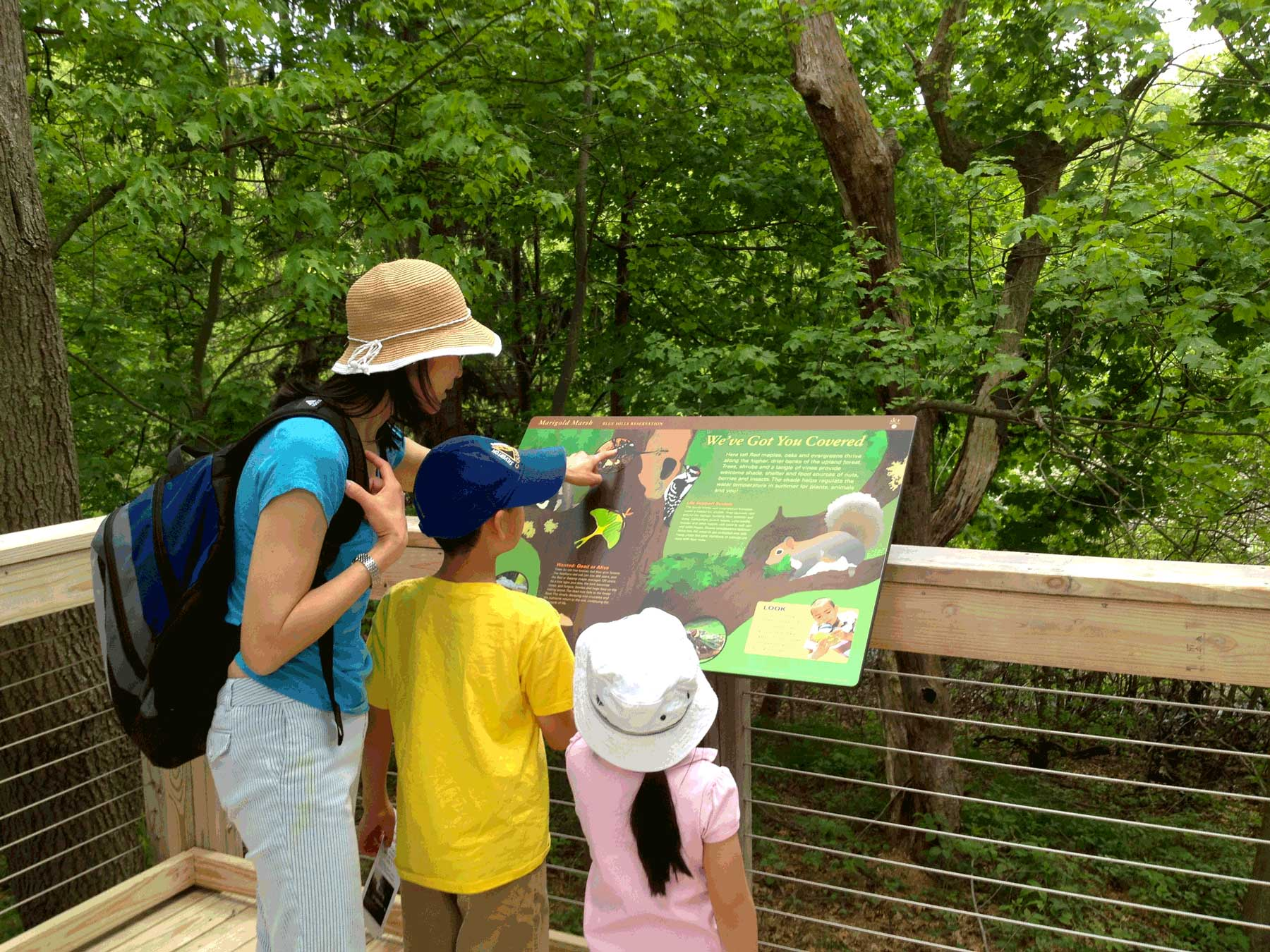 It is located in the woodiest portion of the boardwalk so visitors can detect the shelf fungi, downy woodpeckers, and gray squirrels.